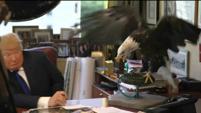 Donald Trump attacked by Eagle